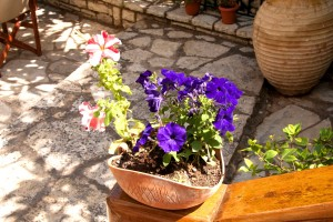 facilities nefeli hotel the garden